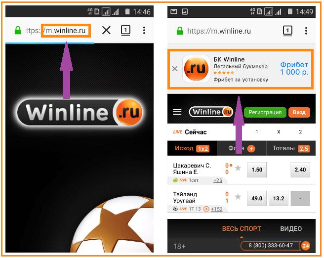 winline apk файл